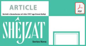 Shejzat cover article generic